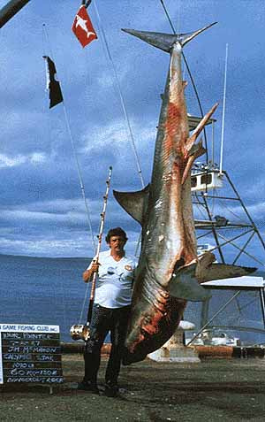 Pirsch forum geheimes wissen kirr und anludertips for Fisher fish chicken indianapolis in
